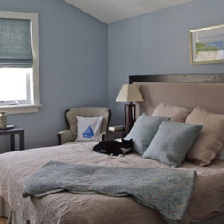 bedroom, large king size bed with black and white cat napping